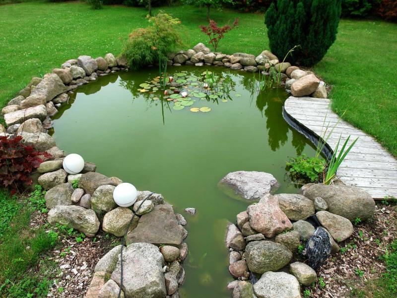 Как построить пруд на приусадебном участке