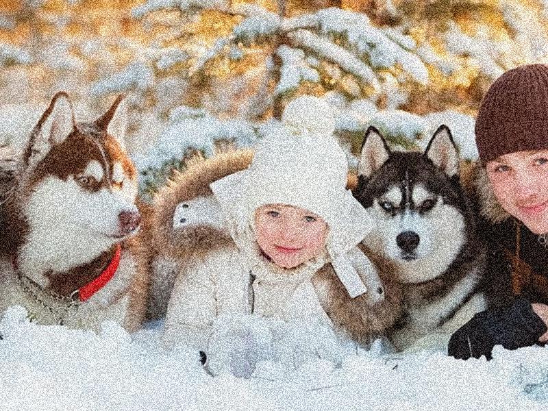 Новогодние туры в Карелию