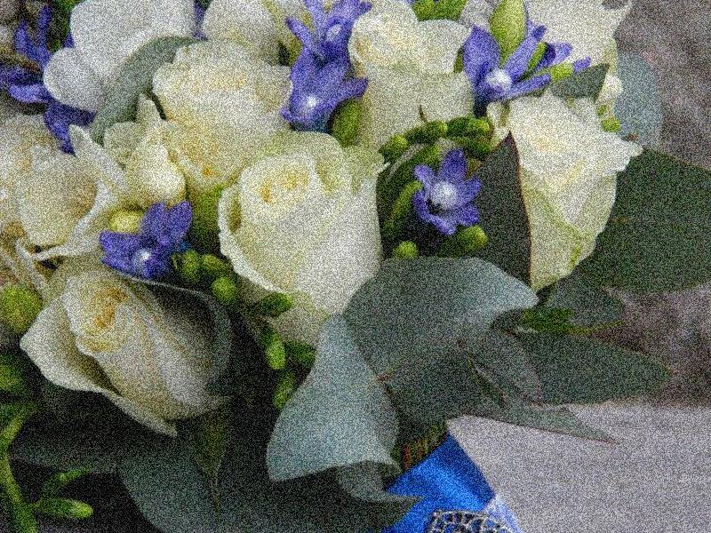 Rosalie магазин цветов